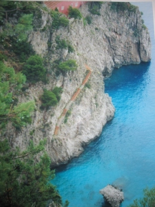 This photo is one I took while walking along the Amalfi Coast in Italy.  Inspiration is drawn from the amazing natural landscape.  There are orange stairs from the ocean that wind up the orange house at the top of the photo which contrast the jagged rock and trees that actually grow out of the rock.  The azure waters below provide a beautiful contrast.  These colors would translate wonderfully into a room.  From neutral beiges and browns with pops of orange and shades of blue as accents.