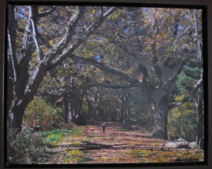 The Path Photographed and Painted By Laurie Lane