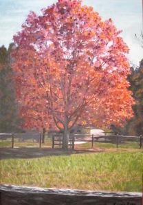 Foliage at Drumlin Farm Mixed Media- Photography & Oil on Canvas